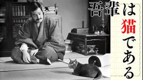 吾輩は猫である【市川崑監督作】