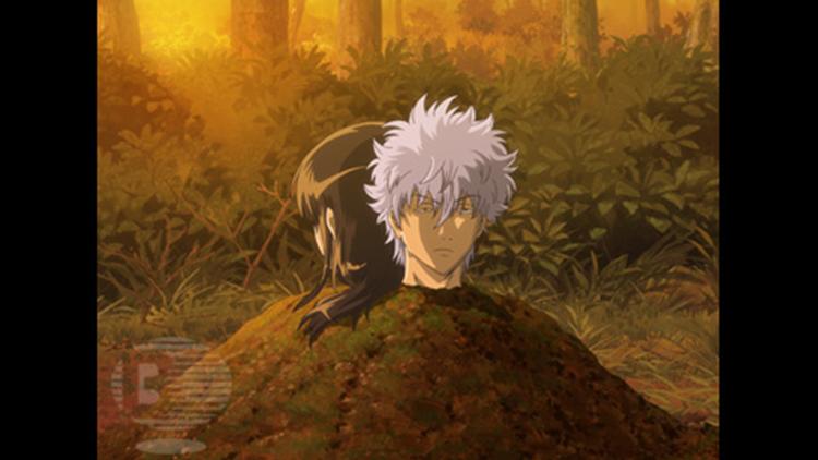 銀魂 (4年目)第192話
