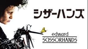 シザーハンズ/字幕【ジョニー・デップ+ウィノナ・ライダー】【ティム・バートン監督】