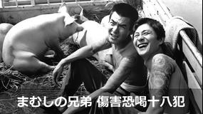 まむしの兄弟 傷害恐喝十八犯【菅原文太主演】