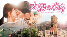 太陽の末裔 Love Under The Sun 第24話(最終話)/字幕