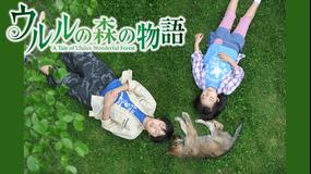 ウルルの森の物語【船越英一郎、深田恭子出演】