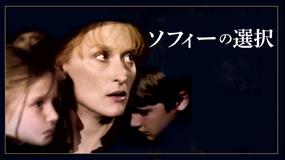 ソフィーの選択/字幕