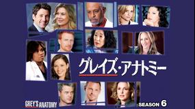 グレイズ・アナトミー シーズン6/字幕